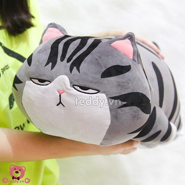 Mèo Hoàng Thượng Bông Nằm