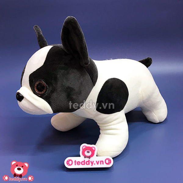 Chó Bull Bông