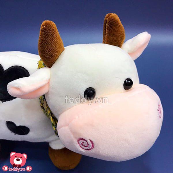 Bò Sữa Bông Khăn Tim