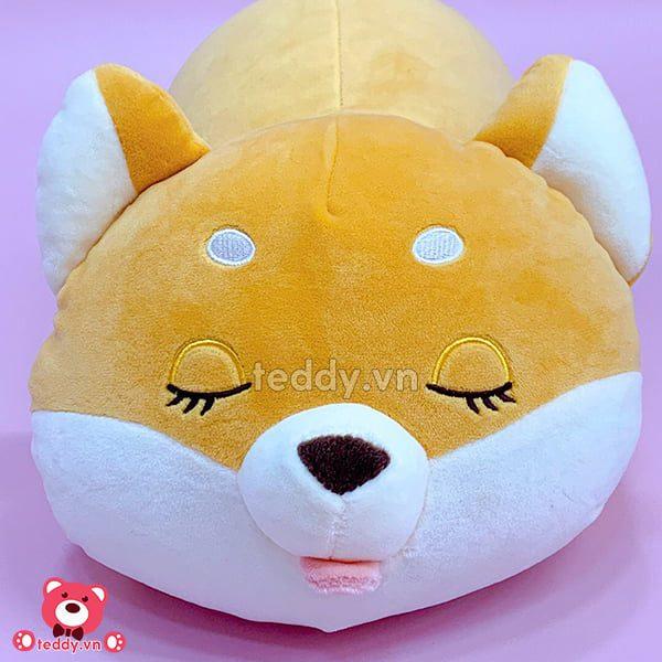 Chó Bông Shiba Biểu Cảm