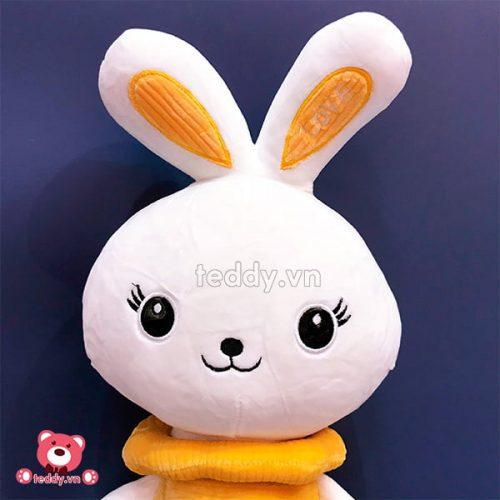 Thỏ Bông Warm