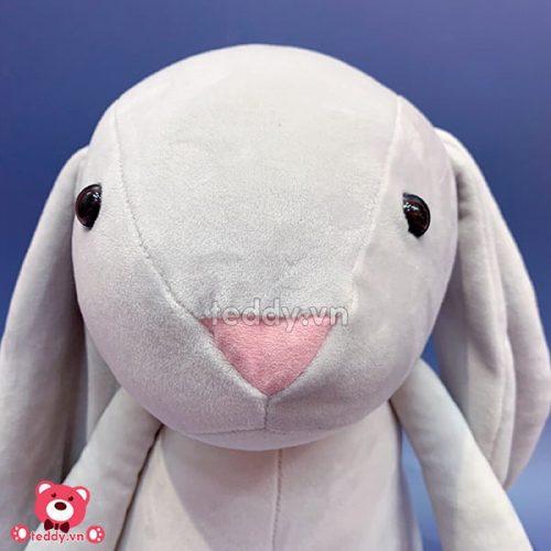 Thỏ Bông Tai Dài Mịn