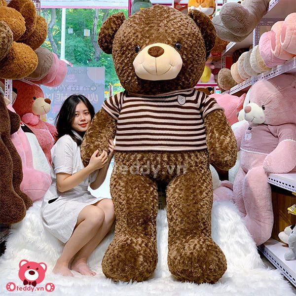 Teddy Socola 2m