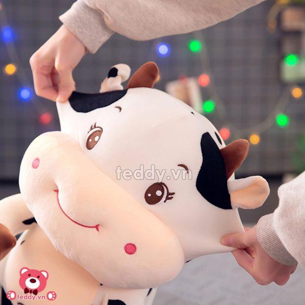 Bò Sữa Bông Ngồi